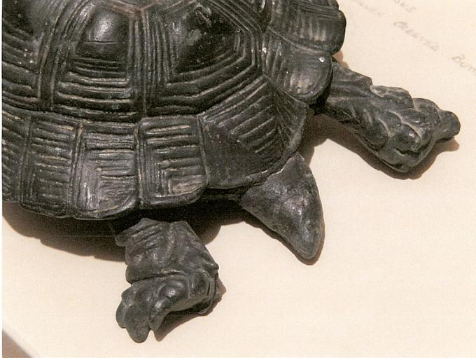 The bronze model of the favoured tortoise attributed to Baron Marochetti