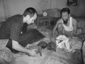 Tim dealing with a bag of turtles in Hanoi in 2002.