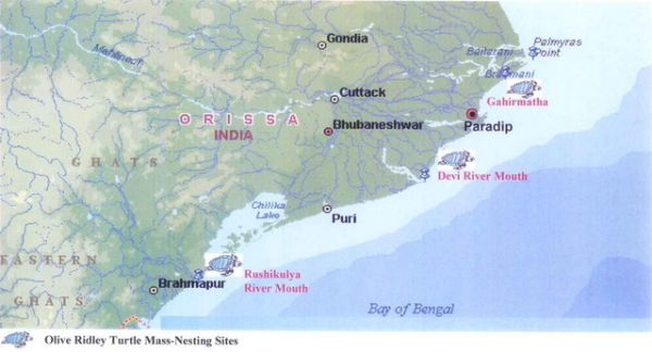 Map Showing Turtle Mass-Nesting Sites on the Orissa Coast